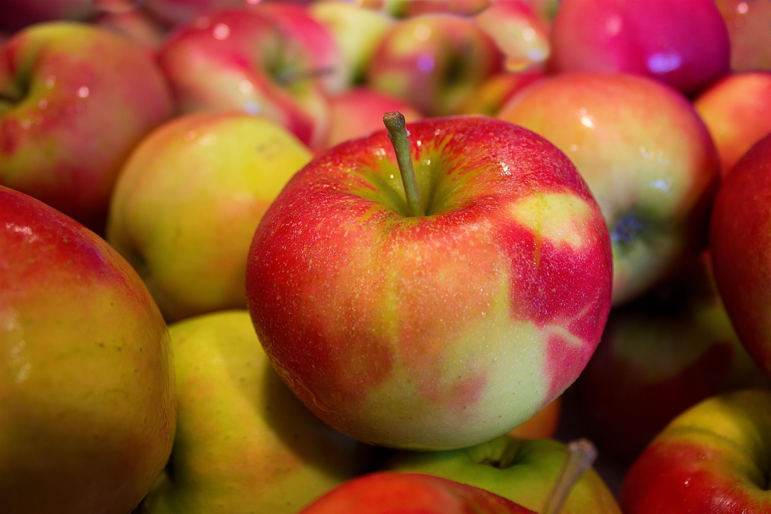 apfel-fruchte-gesund-4148